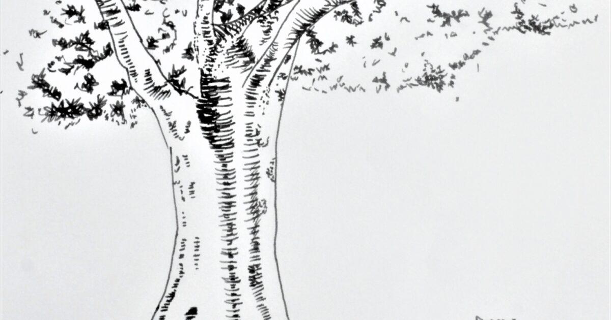 大木と猫2匹